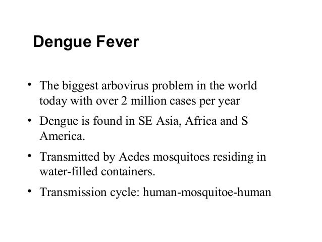 virulent dengue fever Dengue virus type 4 (denv-4) was first reported in the americas in 1981, where it caused epidemics of dengue fever throughout the region in the same year, the region's first epidemic of dengue hemorrhagic fever was reported, caused by an asian strain of dengue virus type 2 (denv-2) that was.
