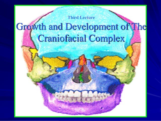Third Lecture  Growth and Development of The Craniofacial Complex
