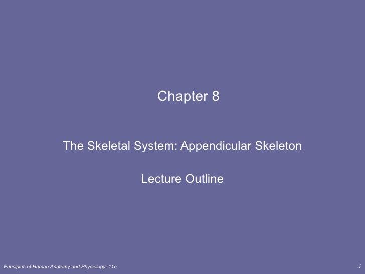 Lect 8   skeletal cont..