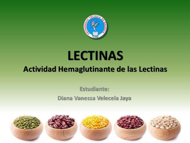 LECTINAS Actividad Hemaglutinante de las Lectinas Estudiante: Diana Vanessa Velecela Jaya