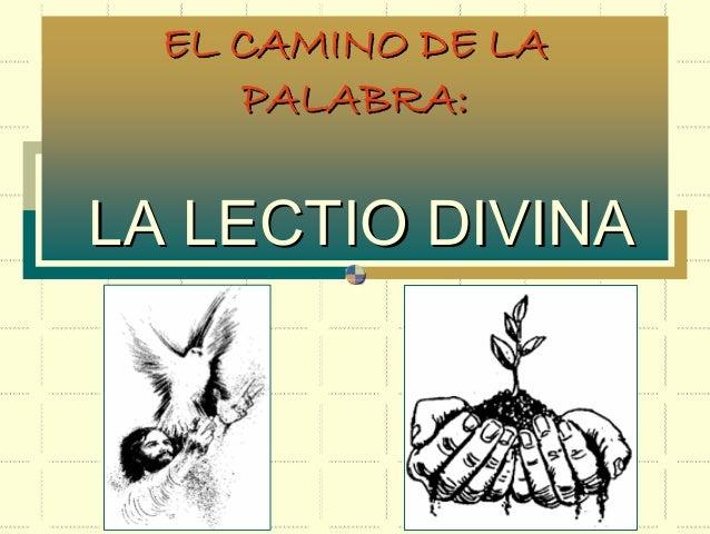 EL CAMINO DE LAEL CAMINO DE LA PALABRA:PALABRA: LA LECTIO DIVINALA LECTIO DIVINA