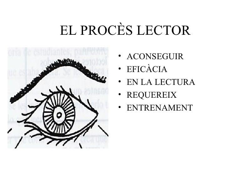 EL PROCÈS LECTOR <ul><li>ACONSEGUIR </li></ul><ul><li>EFICÀCIA </li></ul><ul><li>EN LA LECTURA </li></ul><ul><li>REQUEREIX...
