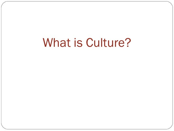 Lecture 2 What Is Culture