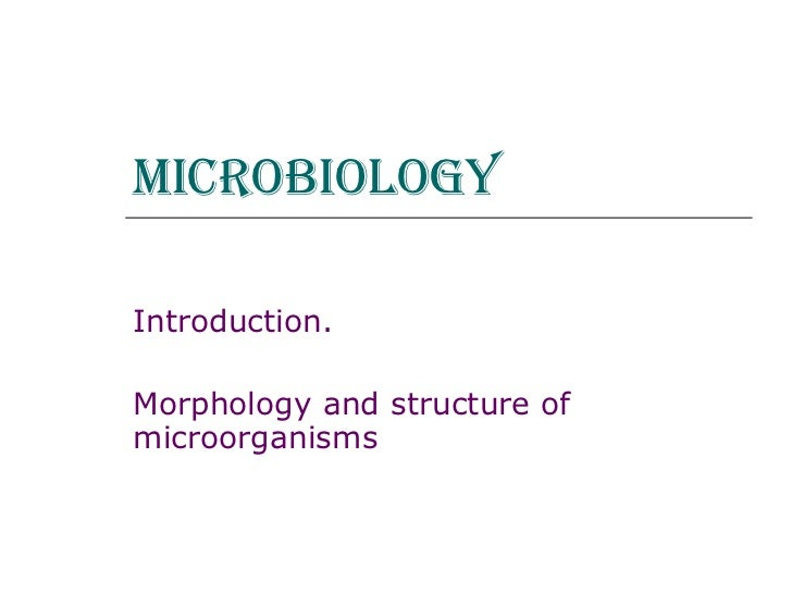 Microbiology   Introduction. Morphology and structure of microorganisms