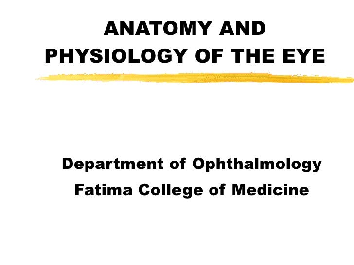 ANATOMY AND PHYSIOLOGY OF THE EYE Department of Ophthalmology Fatima College of Medicine