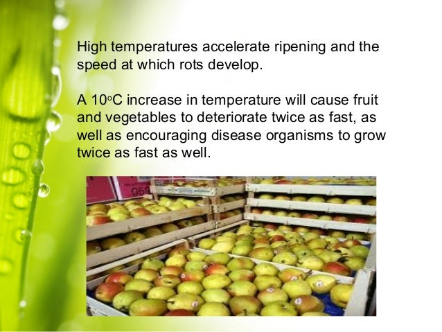 post harvest management of fruits and