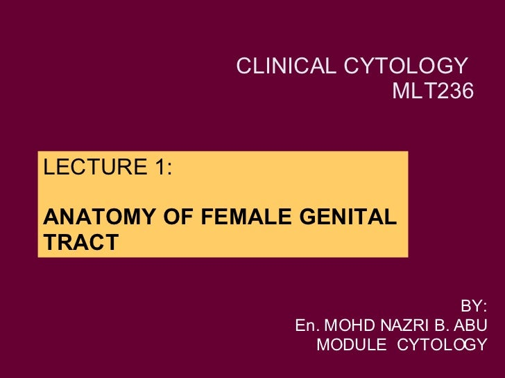 LECTURE 1: ANATOMY OF FEMALE GENITAL TRACT BY: En. MOHD NAZRI B. ABU MODULE  CYTOLOGY CLINICAL CYTOLOGY  MLT236