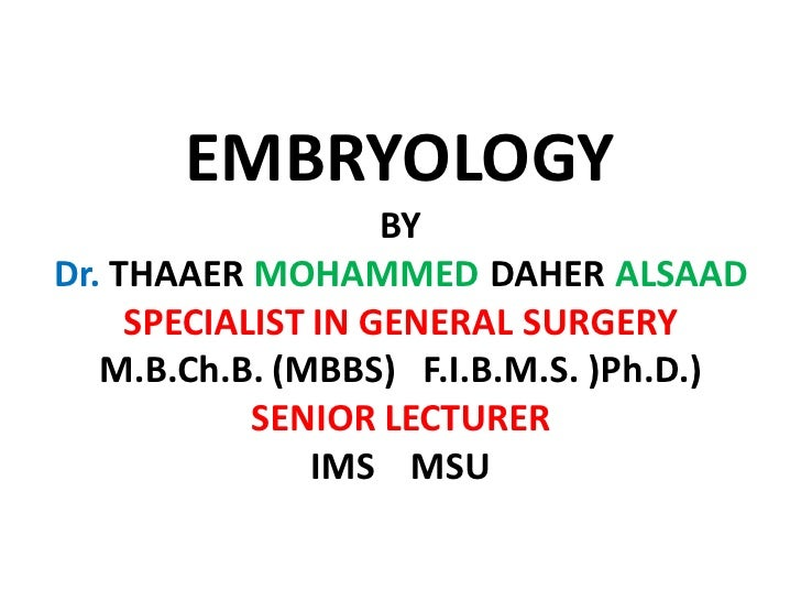 Lecture 12 the skeleton embryology pdf