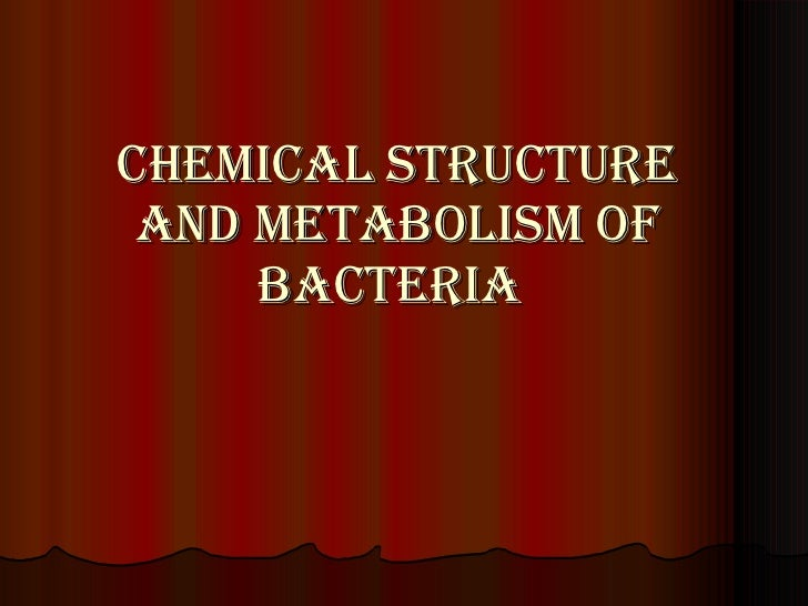 Chemical structure and metabolism of bacteria