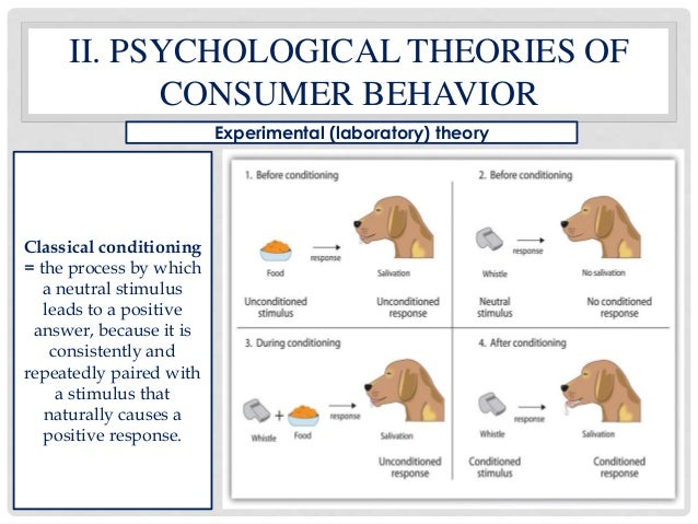 customer behavior theory