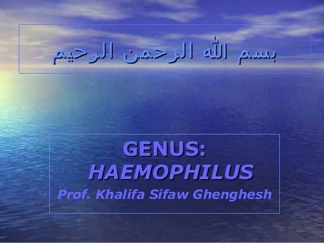 بسم ا الرحمن الرحيم  GENUS: HAEMOPHILUS Prof. Khalifa Sifaw Ghenghesh