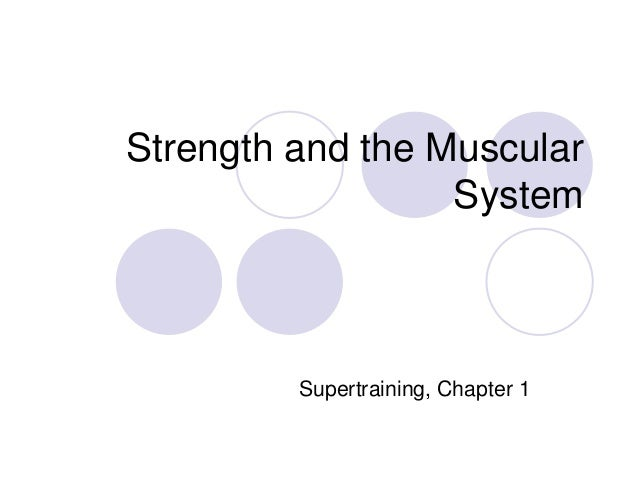 Strength and the muscular system