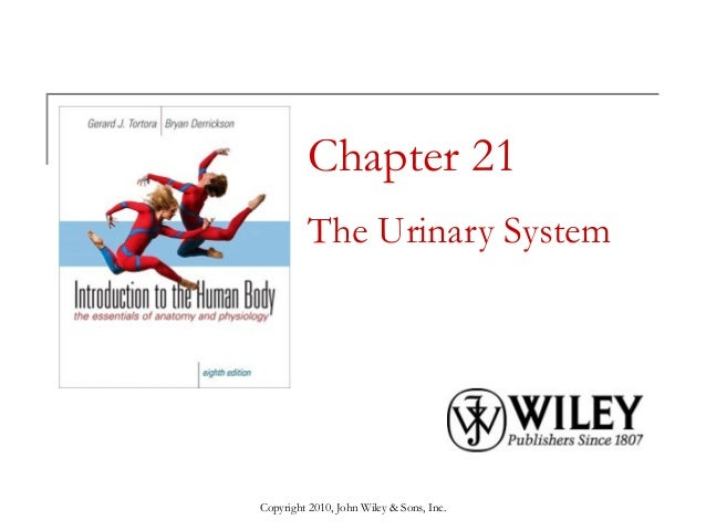 Chapter 21 The Urinary System  Copyright 2010, John Wiley & Sons, Inc.