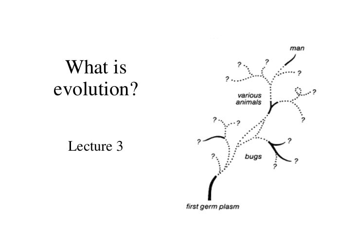 What is evolution? Lecture 3