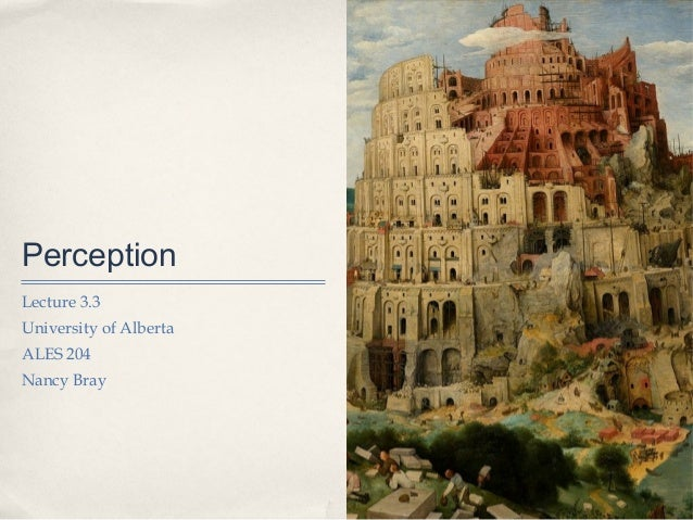 PerceptionLecture 3.3University of AlbertaALES 204Nancy Bray