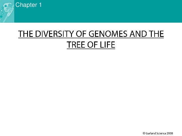 Lecture 3 -the diversity of genomes and the tree of life