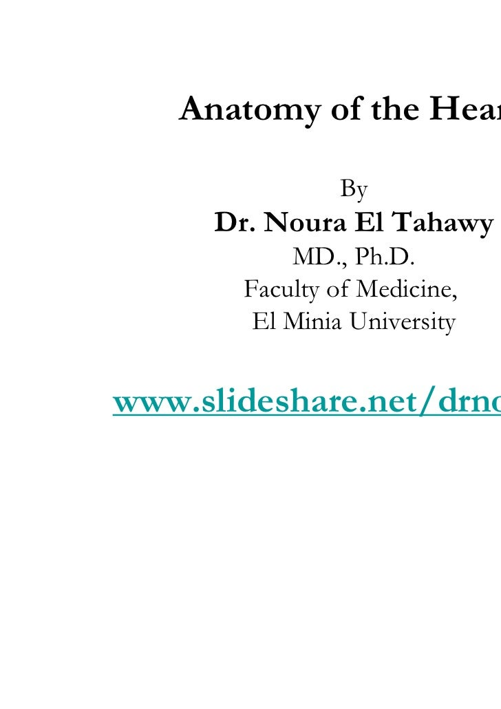 Anatomy of the Heart                By     Dr. Noura El Tahawy           MD., Ph.D.       Faculty of Medicine,        El M...