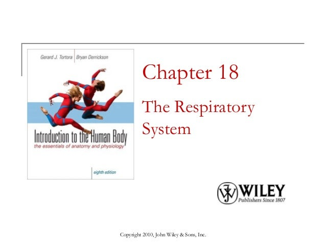 Chapter 18 The Respiratory System  Copyright 2010, John Wiley & Sons, Inc.
