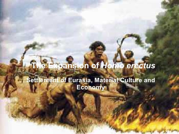 The Expansion of Homo erectus Settlement of Eurasia, Material Culture and                 Economy