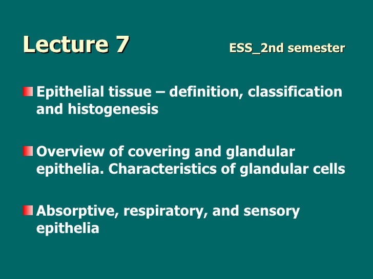Lecture 7     ESS_2nd semester <ul><li>Epithelial tissue – definition ,  classification   and  histogenesis </li></ul><ul>...