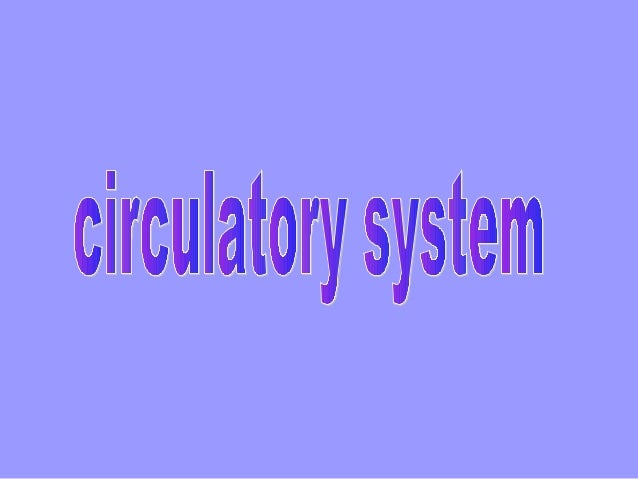 Indeks 12  • The circulatory system ( CS) is composed of two components: the cardiovascular system – CVS ( the function is...