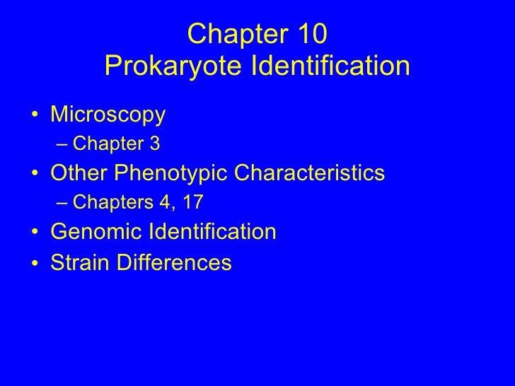 Chapter 10 Prokaryote Identification <ul><li>Microscopy </li></ul><ul><ul><li>Chapter 3 </li></ul></ul><ul><li>Other Pheno...