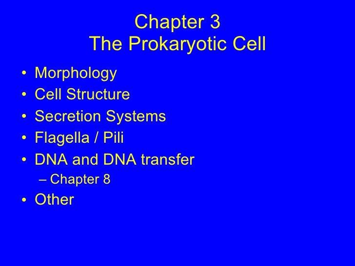 Chapter 3 The Prokaryotic Cell <ul><li>Morphology </li></ul><ul><li>Cell Structure </li></ul><ul><li>Secretion Systems </l...