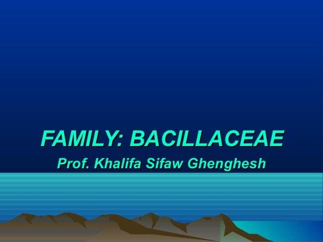 Lectures 8-11-Bacillus anthracis, B. cereus, Clostridium