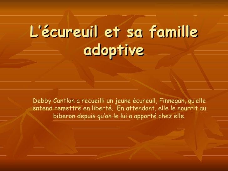 L'écureuil et sa famille adoptive Debby Cantlon a recueilli un jeune écureuil, Finnegan, qu'elle entend remettre en libert...