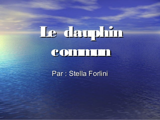 Le dauphin commun Par : Stella Forlini