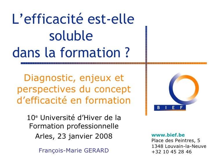 L'efficacité est-elle soluble  dans la formation ?  Diagnostic, enjeux et perspectives du concept d'efficacité en formatio...