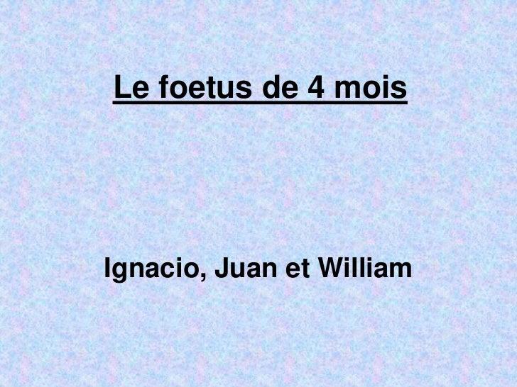 Le foetus de 4 moisIgnacio, Juan et William