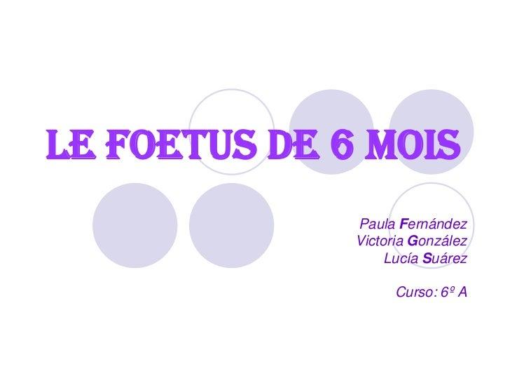 Le foetus de 6 mois              Paula Fernández              Victoria González                   Lucía Suárez            ...