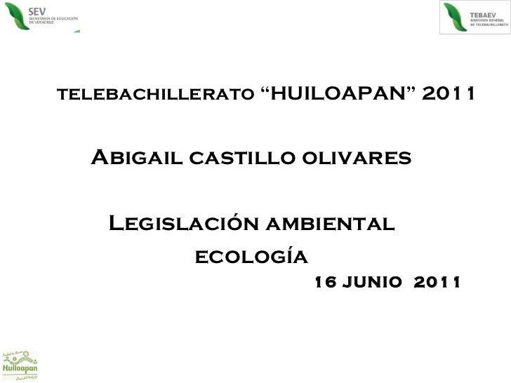 """telebachillerato """"HUILOAPAN"""" 2011 Abigail castillo olivares Legislación ambiental ecología 16 JUNIO  2011"""