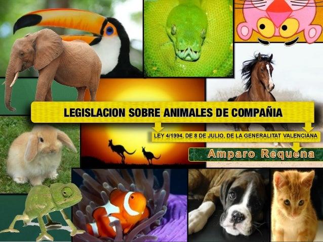 LEGISLACION SOBRE ANIMALES DE COMPAÑIA