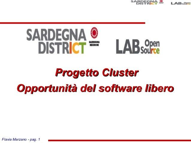 Flavia Marzano - pag. 1 Progetto ClusterProgetto Cluster Opportunità del software liberoOpportunità del software libero