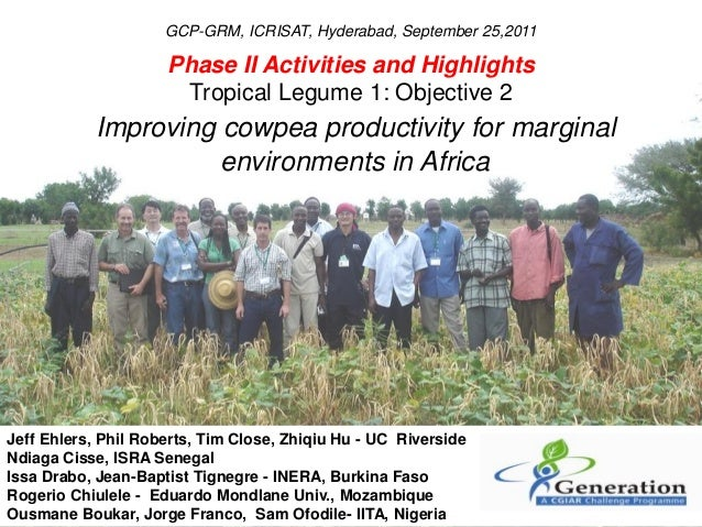 Phase II Activities and HighlightsTropical Legume 1: Objective 2Improving cowpea productivity for marginalenvironments in ...