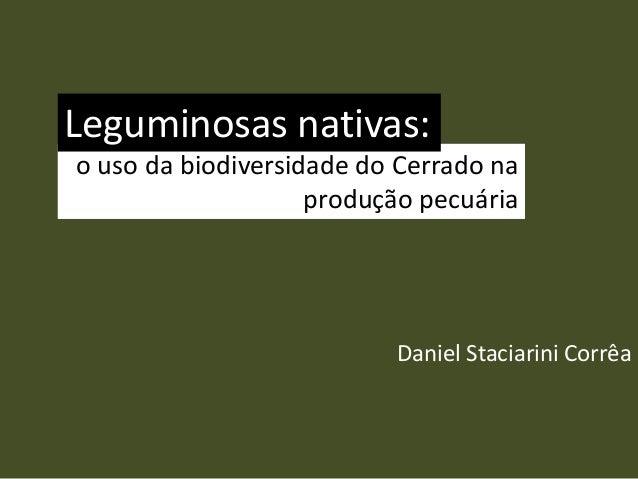 o uso da biodiversidade do Cerrado na produção pecuária Daniel Staciarini Corrêa Leguminosas nativas: