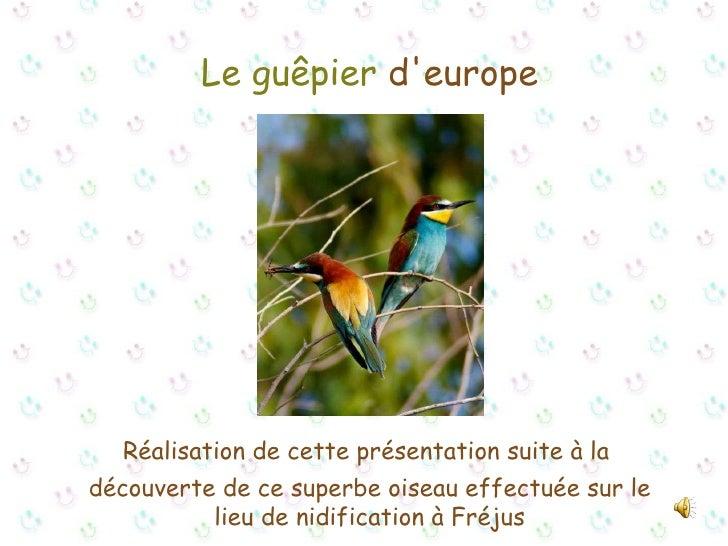 Le guêpier  d'europe Réalisation de cette présentation suite à la  découverte de ce superbe oiseau effectuée sur le lieu d...