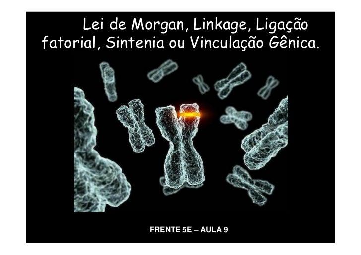 Lei de Morgan, Linkage, Ligaçãofatorial, Sintenia ou Vinculação Gênica.               FRENTE 5E – AULA 9