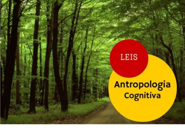 Lei 01 - quanto mais gente tivermos no planeta, mais complexidade teremos na sociedade; População Complexidade =