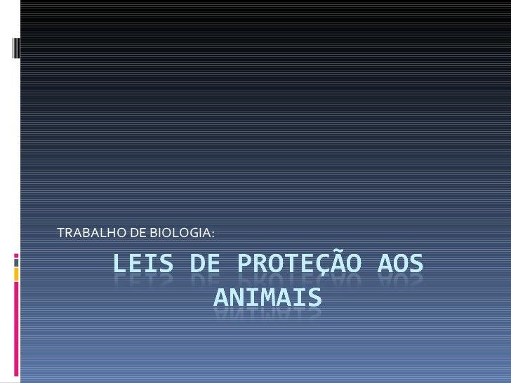 Leis de proteção aos animais