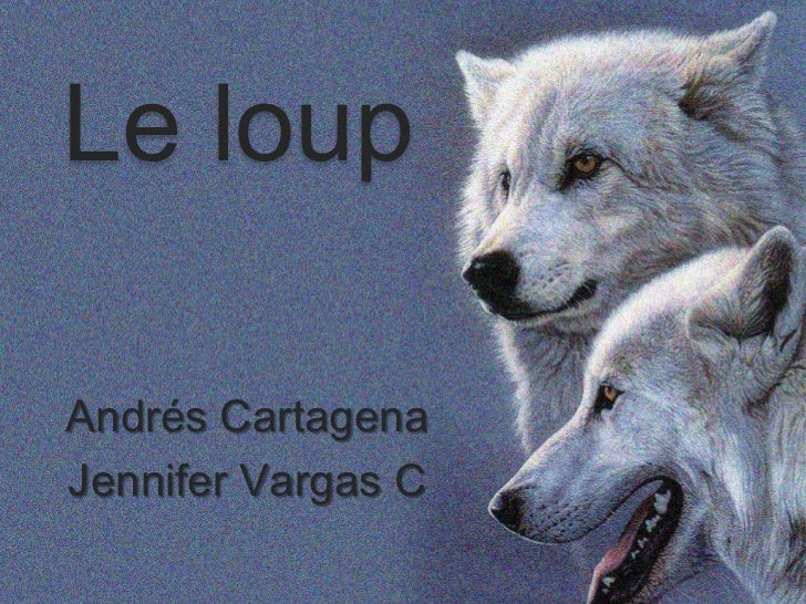 Le loupAndrés CartagenaJennifer Vargas C