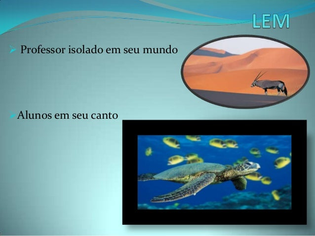Lem   slides