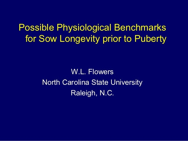 Possible Physiological Benchmarks for Sow Longevity prior to Puberty             W.L. Flowers     North Carolina State Uni...