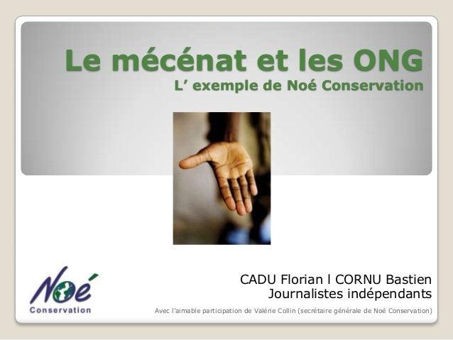 Le mécénat et les ONG L' exemple de Noé Conservation  CADU Florian l CORNU Bastien Journalistes indépendants Avec l'aimabl...