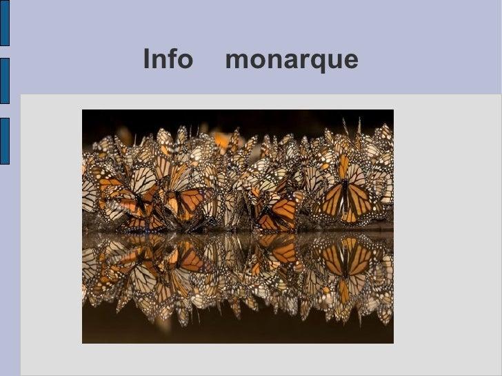 Info  monarque