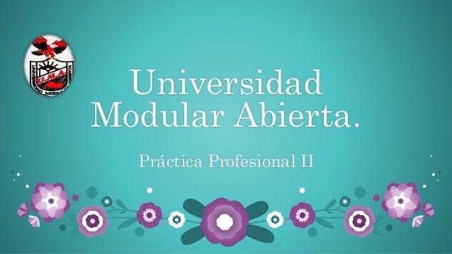 Universidad Modular Abierta. Práctica Profesional II