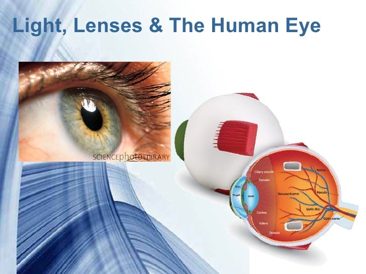Light, Lenses & The Human Eye           Powerpoint Templates