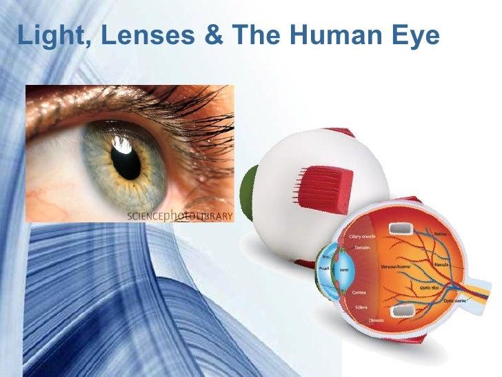 Light, Lenses & the Human Eye